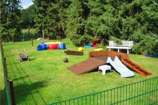 Как обустроить игровую площадку для собаки возле дома